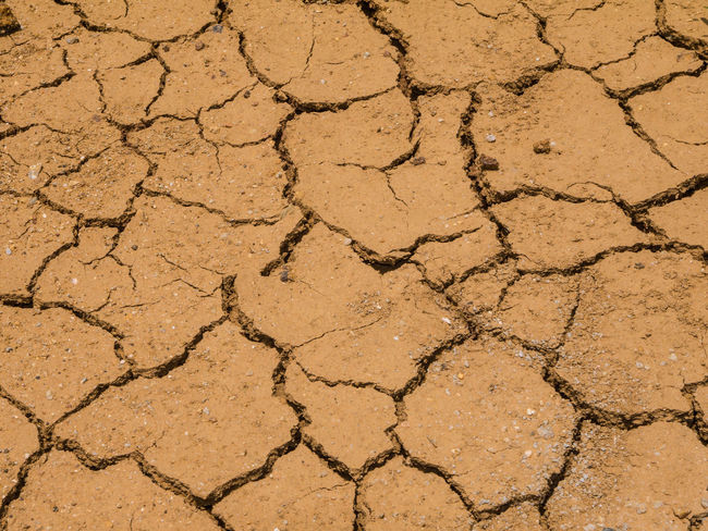 Abstract Arid Climate Backgrounds Beauty In Nature Brown Close-up Cracked Day Detail Elevated View Grey Ground Land Natural Pattern Nature No People Outdoors Texture Textured  Tranquility