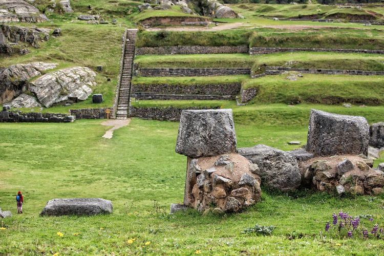 Inca temple Rice Paddy Field Rural Scene Agriculture Old Ruin Ancient Civilization Grass Green Color Landscape