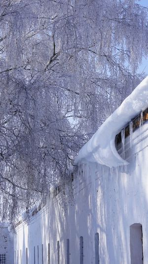 Monastery wall Wall Monastery Orthodox Church Cold Temperature Winter Snow Frozen Ice No People Nature Extreme Weather