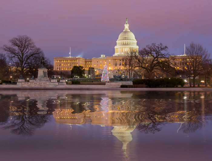 Sunrise at the US Capitol building in the capital city of Washington DC in the USA Capitol DC Government Reflection Skyline US Capitol US Capitol Building USA Washington Washington DC Washington, D. C. Capital Congress Dawn Dome Lake Pool Sunrise