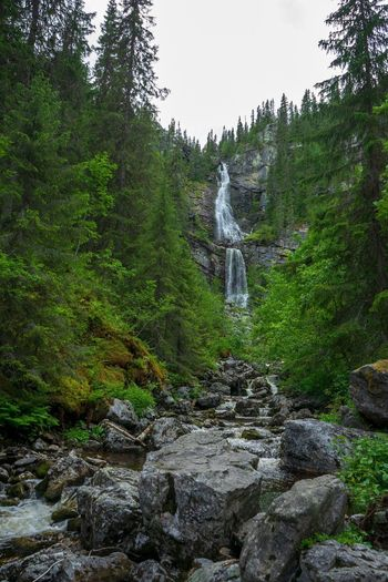 The waterfall Vemdalen Outdoor Life Summer Scandinavia Sweden Hiking Adventure Waterfalls Waterfall Tree Plant Solid Growth Water Green Color Nature Beauty In Nature Scenics - Nature No People Travel Destinations Outdoors