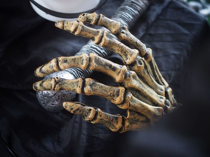 Close-up of human skeleton on table during halloween