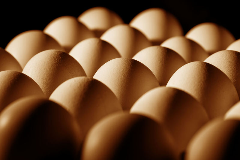 Close-up of eggs against black background