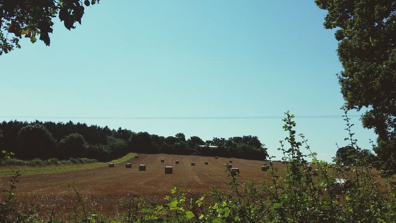 Hay Bales Countryside Rural Scene Blue Sky Worcestershire Uk