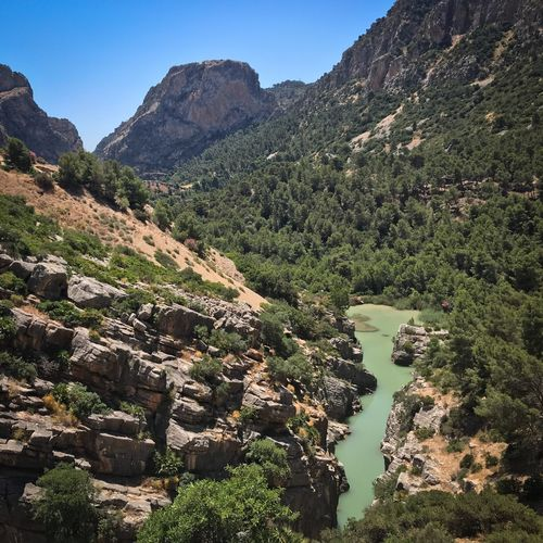 Postcard material Caminito Del Rey Plant Mountain Tree Beauty In Nature Tranquility Nature Scenics - Nature Tranquil Scene Sky Day Environment No People Landscape Non-urban Scene Clear Sky Sunlight Land Mountain Range Green Color The Great Outdoors - 2018 EyeEm Awards