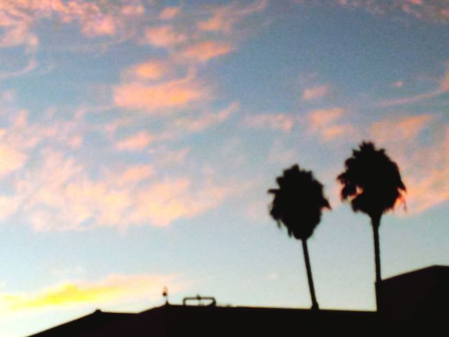Urban Paradise Calisky My Cali Life Vallejo Clouds And Sky Sunset_collection Sunset Silhouettes