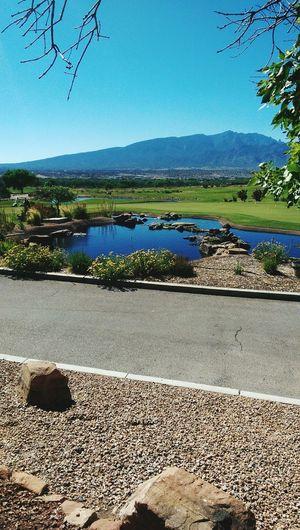 Back Home Golfing Albuquerque