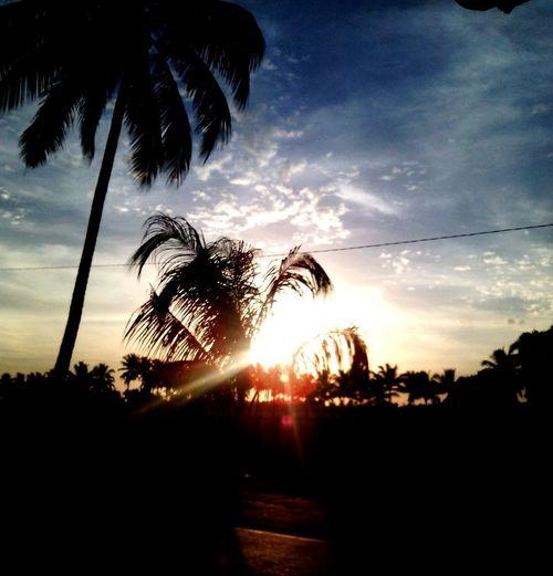 sunset-new life:)