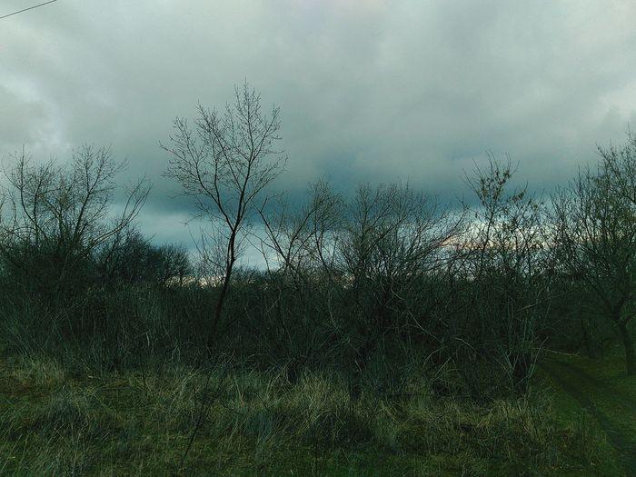 Горловка не много завораживающи !!! горловка Gorlovka Природа пейзаж удивительноерядом First Eyeem Photo