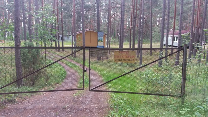 Losevo, Russia. Security Protection Chainlink Fence Outdoors No People Nature Лосево Losevo Russia Nature Forest Россия Russland Sommer Summer Sportjugendreise Sportjugend Hessen Sportjugend Fence Zaun Safety Sign Signporn Schild EyeEmNewHere