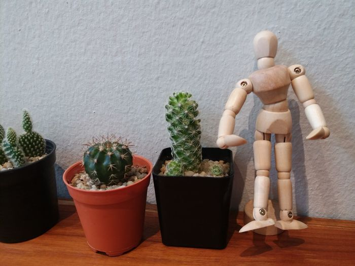 Close-up of statue and potted plants on table