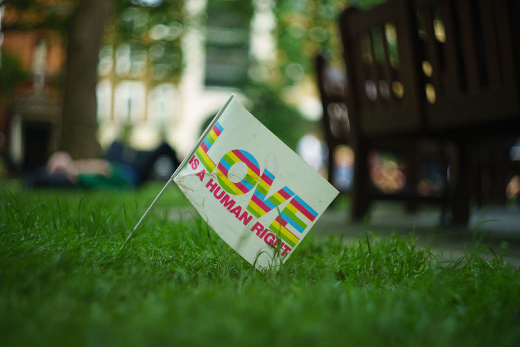 Close up of flag on grassy field