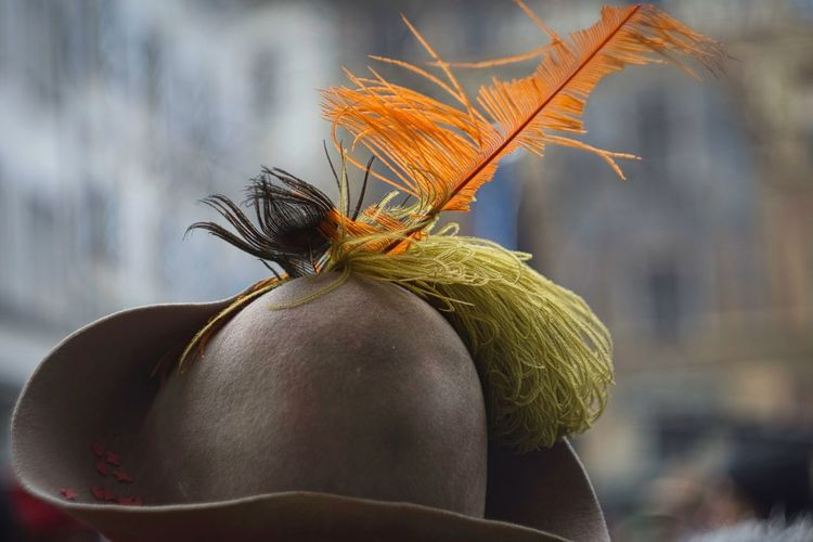 Close-up of hat with feather