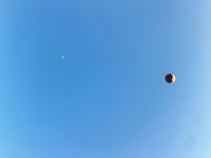 Hot air balloons flying against blue sky