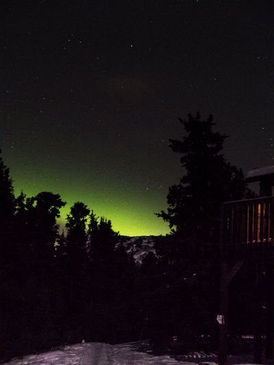 nightly glow Astronomy Aurora Borealis Aurora Polaris Beauty In Nature Canada Idyllic Lodge Low Angle View Nature Night Nightphotography No People Outdoor Photography Outdoors Scenics Silhouette Sky Snow Star - Space Star Field Tranquil Scene Tranquility Wilderness Winter Yukon