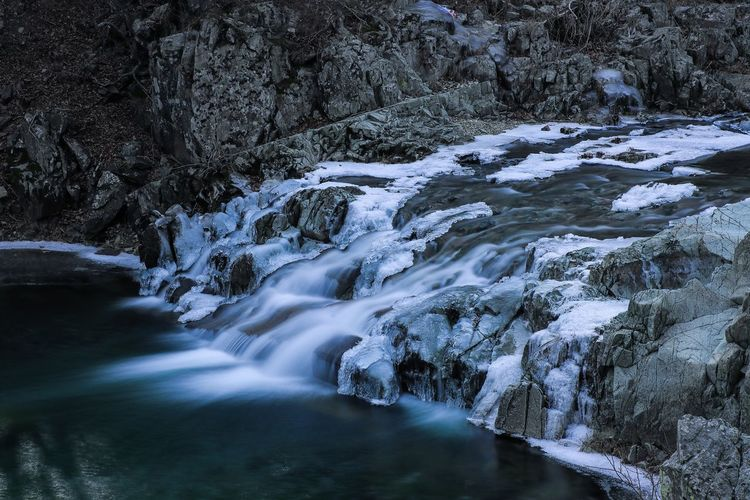 Scenic view of stream flowing through rocks in forest