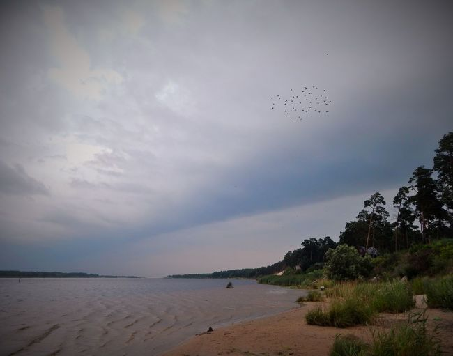 Latvia Nature Storm Summer Showcase July