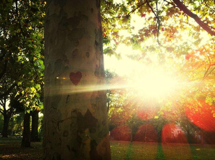 <3 <3 Enjoying The Sun Kreuzberg My Lovely Hood