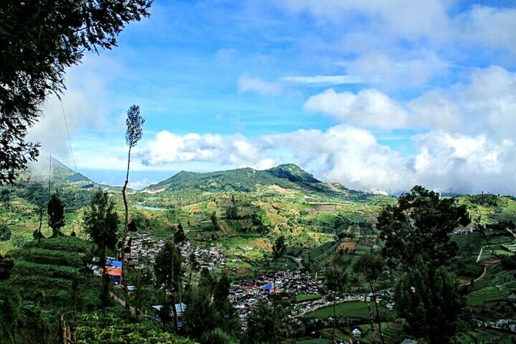 Suatu hari aku akan pergi ke gunung gunung yang lebih menerima seluruh lelahku, dan ke hutan hutan yang lebih membuatku tenang Mountains And Sky Mountain View Indonesia_photography Naturephotography Nature Lovers ♡♡♡ Nature_perfection Green Green Green!  Feel The Journey