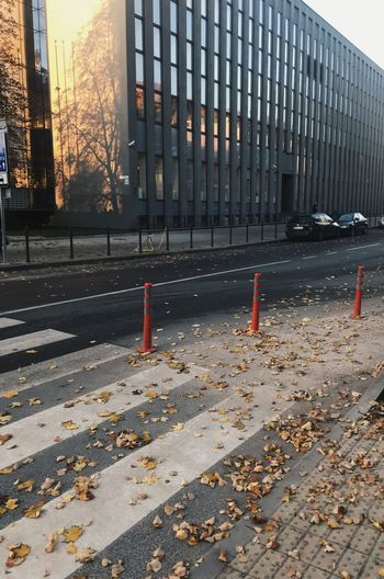 Stay Shadow Golden Leafs Building Exterior Architecture Built Structure City No People Street Road Day Nature Building Transportation Outdoors Leaf Security Sign Barrier Plant Part Safety Autumn Protection