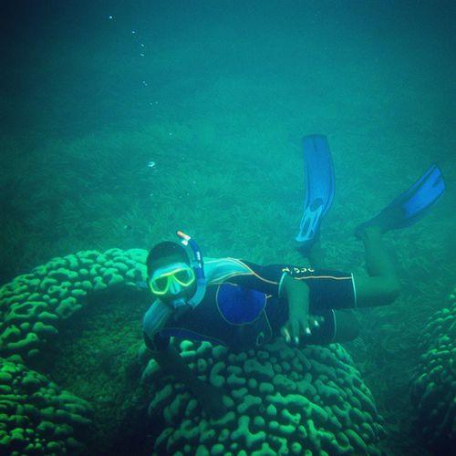 Diving Kenyancoast Lotsoflovetheband Awesome Seadiving Deepsea Diving Badass Badassawesome Martyn Photography Martyn