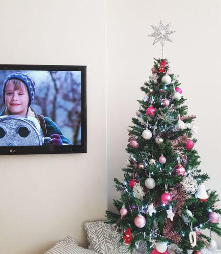 Christmas Christmas Tree Christmas Decoration Tree Celebration Indoors  Childhood