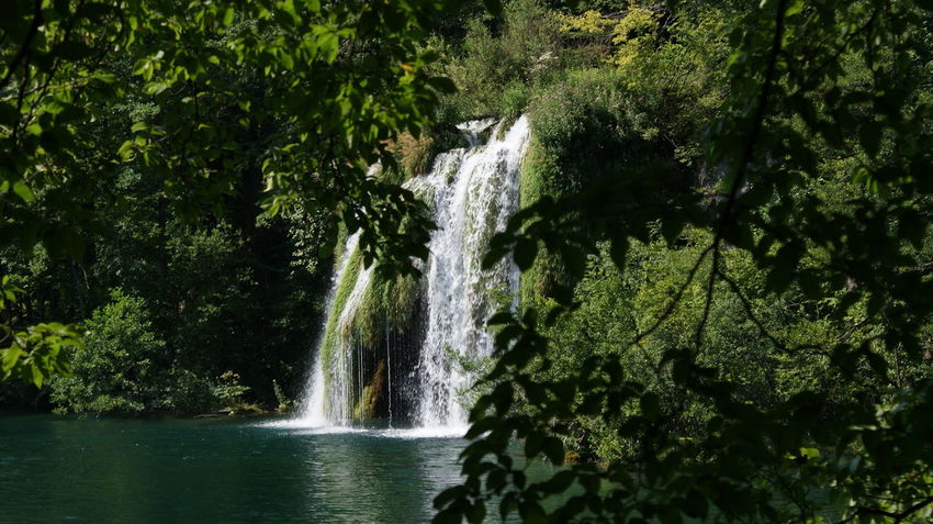 Plitvice lakes Adventure Beauty In Nature Day Flowing Water Forest Long Exposure Motion Nature No People Scenics Tree Water Waterfall Waterfront