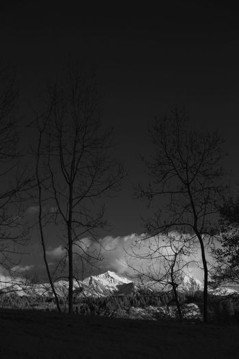 Infrared view on the Grünten mountain Allgäu Grünten Infrared Bare Tree Beauty In Nature Branch Day Infrared Photo Infrared Photography Infrarot Landscape Nature No People Outdoors Scenics Silhouette Sky Tranquil Scene Tranquility Tree