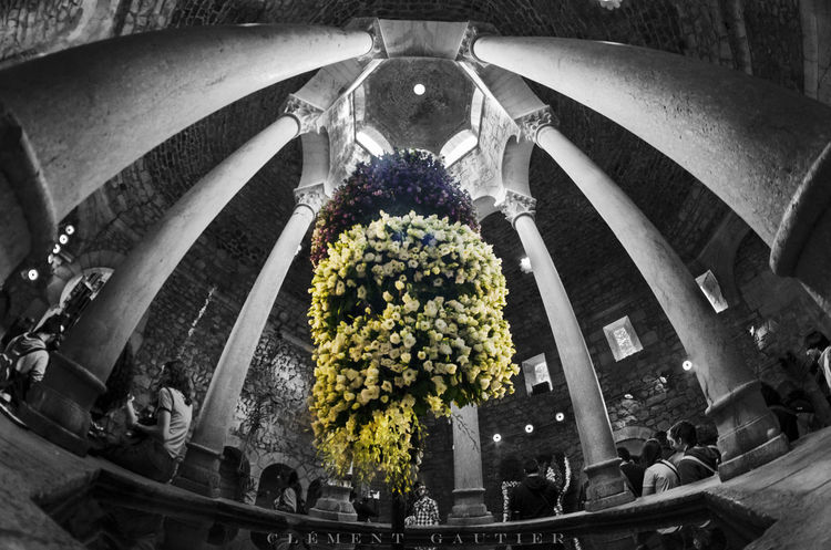 Temps de flors 2016 - Girona - Spain Catalonia Catalunya Day Espagne España Flower Flowers Girona Girona Temps De Flors 2016 SPAIN