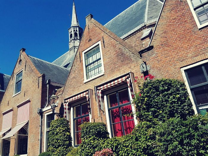 Old building Church City Life Building Exterior Sky Outdoors No People Building Exterior Architecture Built Structure Low Angle View Window Blue Clear Sky City Architecture Built Structure Low Angle View Haarlem Window Blue City Sky Church Plant Day