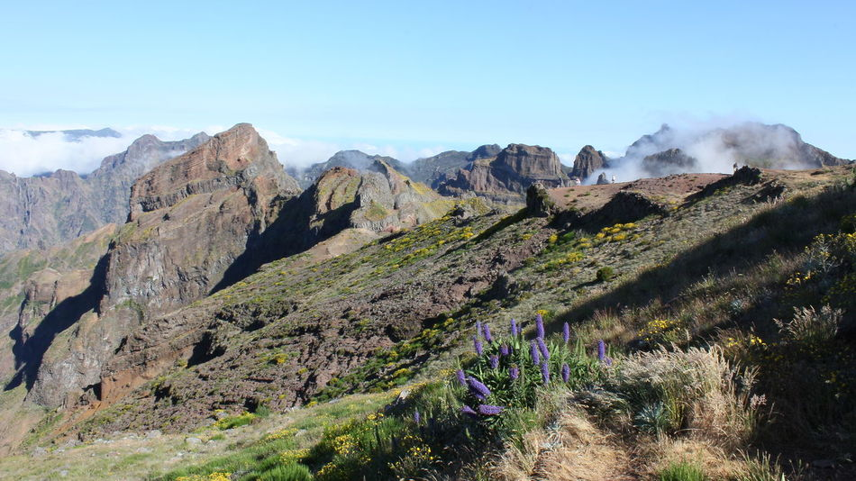 Landscape Madeira Madeira Island Madeira Islands Madeira Mountains Maderia Mountains In Fog Nature Portugal