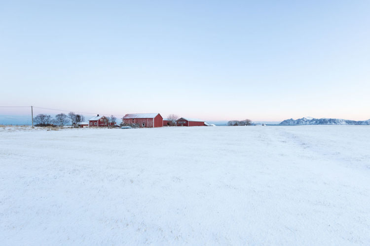 Small farm at the end of a field in winter against clear blue sky during sunrise Winter Cold Temperature Scenics - Nature Pastel Colored Sunrise Snow Frozen Arctic Idyllic Blue Light Blue Rural Scene Barn Farm Farmhouse Morning Field Grass Area Simplicity Minimalism Agriculture Sky Clear Sky Copy Space Architecture Nature Day Landscape Building Exterior White Color No People Building Tranquil Scene Built Structure Environment Outdoors Extreme Weather
