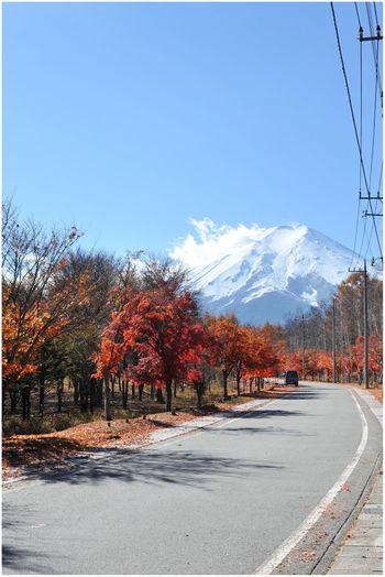 Fuji-san. Autumn colours. (Nikon d700) Eye4photography  EyeEm Nature Lover EyeEm Best Shots Japan