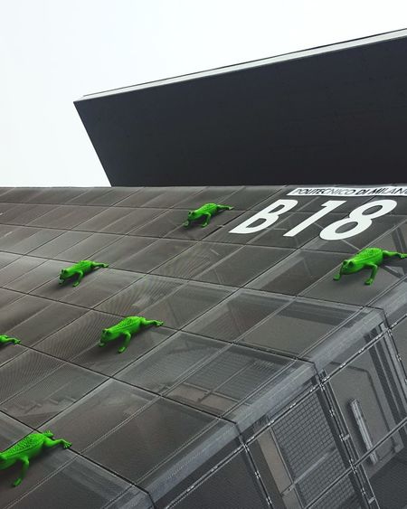 it's raining frogs! Building Buildings Structure Grid Net Frog Frogs Green Green Color Fog Photography Photooftheday Architecture Campus University Laboratory Politecnicodimilano Directional Sign Street Name Sign Information Sign Pixelated Lighthouse Signboard One Way Information