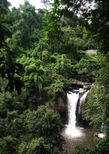 Eye4photography  Edge Of The World The Great Outdoors - 2015 EyeEm Awards Rainforest Waterfall Green EyeEm Thailand Nationalpark in Thailand Nature_collection