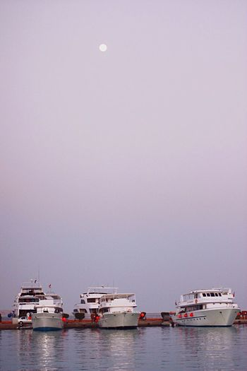 Cruise ships on sea against clear sky