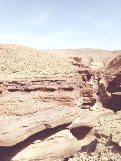 Redcanyon Negev  Negev Desert Negev Israel Sand Dune Desert Arid Climate Shadow Sand Rock - Object Sunlight Sky Landscape