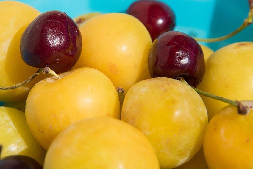 Fresh fruir Food Food And Drink Fruit Healthy Eating Freshness Wellbeing Still Life