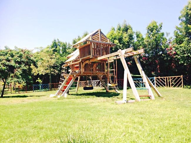 Playground Grass Playground Tree Swing Architecture Outdoor Play Equipment The Graphic City Built Structure No People Building Exterior Childhood