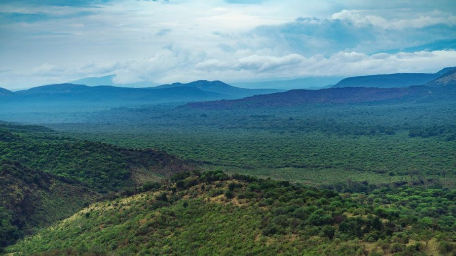 Ethiopia Scenic Scenics - Nature Scenics Nature_collection Africa Ethiopia African Ethiopian Omo Valley Ethiopian Photography 🇪🇹 Scenics - Nature Landscape Beauty In Nature Environment Tranquility Mountain Tranquil Scene Sky Plant Nature No People Cloud - Sky Green Color Land Mountain Range Tree Growth Idyllic Non-urban Scene Day