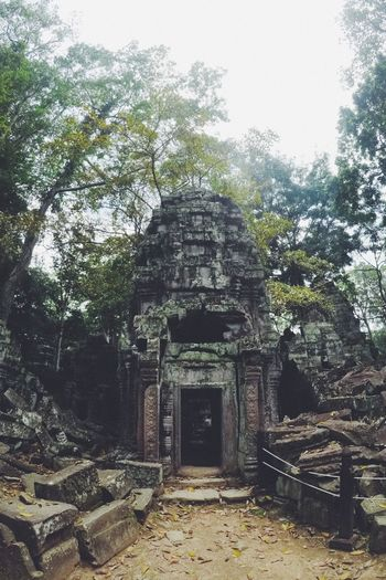 Abandoned Ancient Ancient Civilization Angkor Wat Architecture Building Exterior Built Structure Cambodia Damaged Day History Nature No People Old Ruin Outdoors Sky Steps Travel Destinations Tree