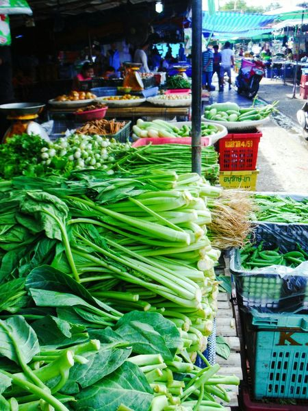Freshness Vegetable Abundance Healthy Eating Food Choice Market Variation Market Stall Street Food Market Thai Market Marketlife Market Thailand Farmers Market Morning Market Market Life For Sale Fresh Vegetables Farmers Life Farmer's Market Vegetable Market Vegetables Kale Green Vegetables