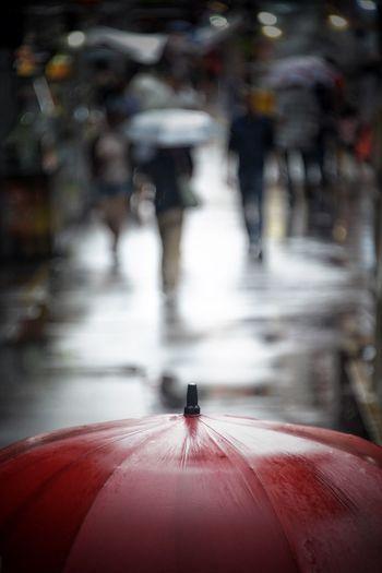 Wet Day Umbrella☂☂ Raining Red Eyeeem Gallery Singaporestreetphotography Street Light Wet Umbrella Transportation Incidental People Rain City Street Rainy Season The Street Photographer - 2018 EyeEm Awards The Street Photographer - 2018 EyeEm Awards The Traveler - 2018 EyeEm Awards The Photojournalist - 2018 EyeEm Awards