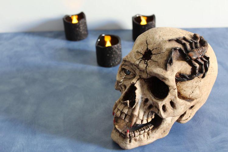 Human Skull Indoors  Human Bone Human Skeleton Close-up Day Candle