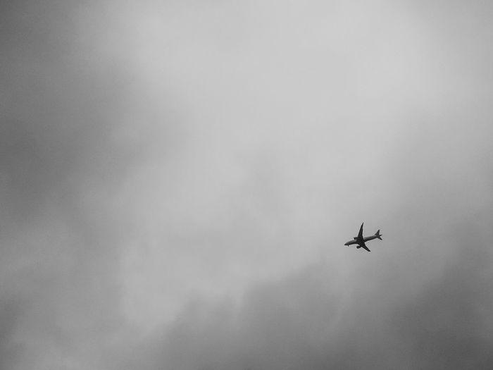 Landscape EyeEm Best Shots EyeEm Best Edits Minimalism Minimal Black & White Airplane Flying Air Vehicle Sky Foggy Smoke - Physical Structure Emitting