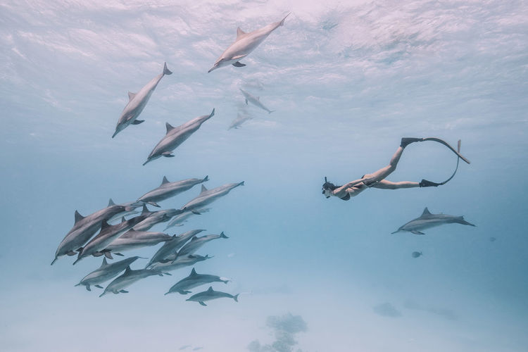 Woman snorkeling with fishes underwater