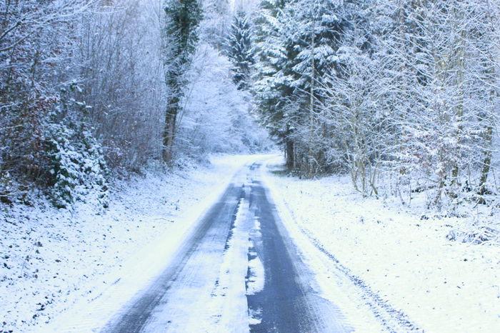 Base Bauen Cold Temperature Day Frio ⛄❄ Nature No People Outdoors Snow Snowing Switzerland Tree Vida Winter