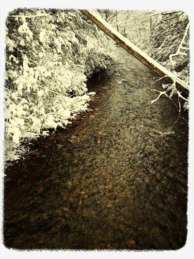 Nature Snow Outdoors Stream