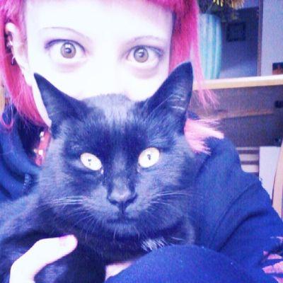 Lovehim Meow