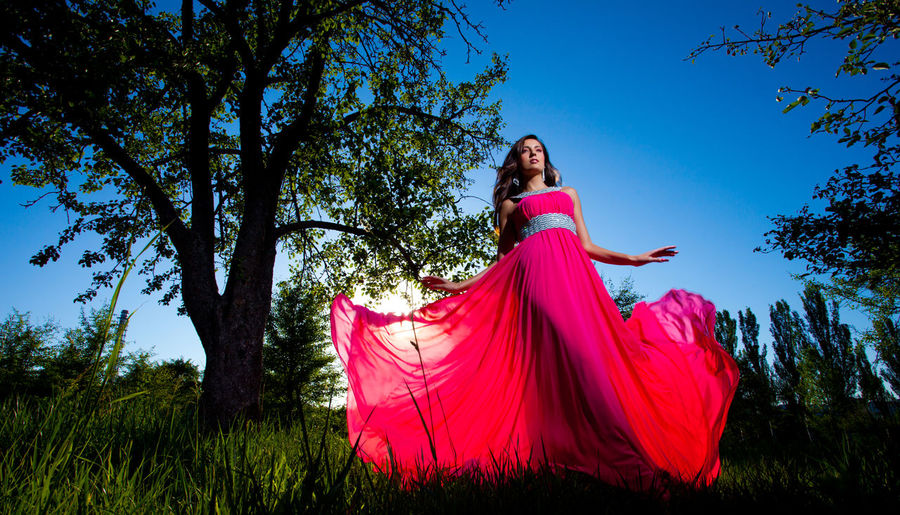 Young and beautiful woman in an airy pink dress standing on the grass Hairstyle Outdoors Beautiful Woman Adult Day Grass Sky Clothing Young Women Lifestyles Leisure Activity Real People Full Length Pink Color Nature Young Adult Women Dress Fashion One Person Plant Tree Field Low Angle View Land